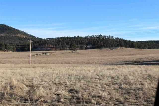 Lot 11 Agate Lane, Custer, SD 57730 (MLS #66963) :: Black Hills SD Realty