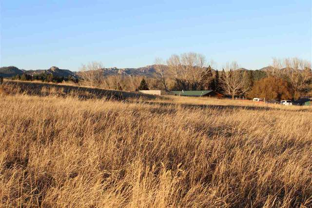 Lot 12 Agate Lane, Custer, SD 57730 (MLS #66964) :: Black Hills SD Realty