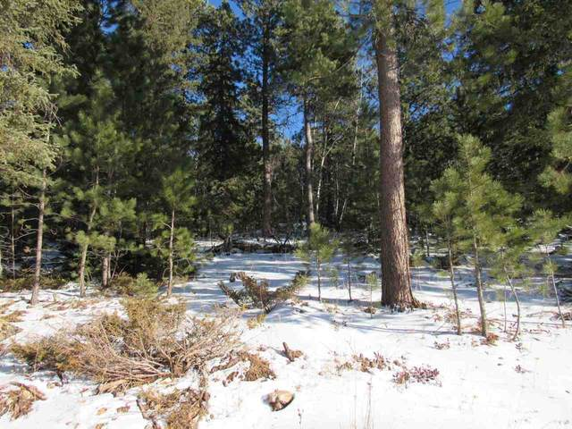 TDB Lot 47 Snowcat Road, Lead, SD 57754 (MLS #66979) :: Christians Team Real Estate, Inc.