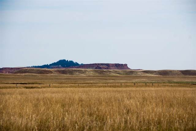 Lot 4 Government Valley Road, Sundance, WY 82729 (MLS #67015) :: Christians Team Real Estate, Inc.