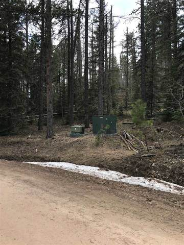 LOT 7 Whitetail Drive, Lead, SD 57754 (MLS #67016) :: Daneen Jacquot Kulmala & Steve Kulmala
