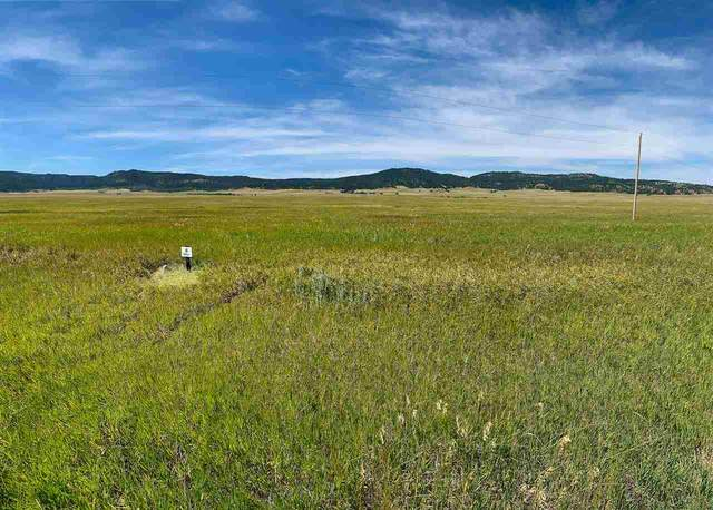 Lot 5 Government Valley Road, Sundance, WY 82729 (MLS #67017) :: Christians Team Real Estate, Inc.