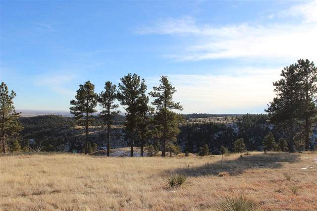 lot 16 Brook Drive, Hot Springs, SD 57747 (MLS #67022) :: Daneen Jacquot Kulmala & Steve Kulmala