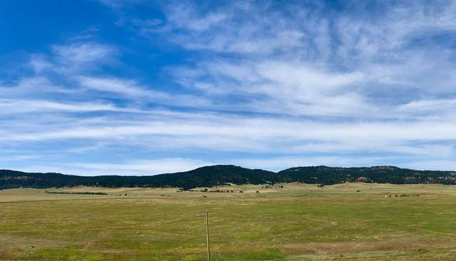 Lot 9 Government Valley Road, Sundance, WY 82729 (MLS #67030) :: Christians Team Real Estate, Inc.
