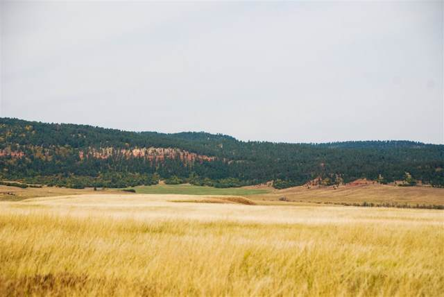 Lot 11 Address Not Published, Sundance, WY 82729 (MLS #67034) :: Christians Team Real Estate, Inc.