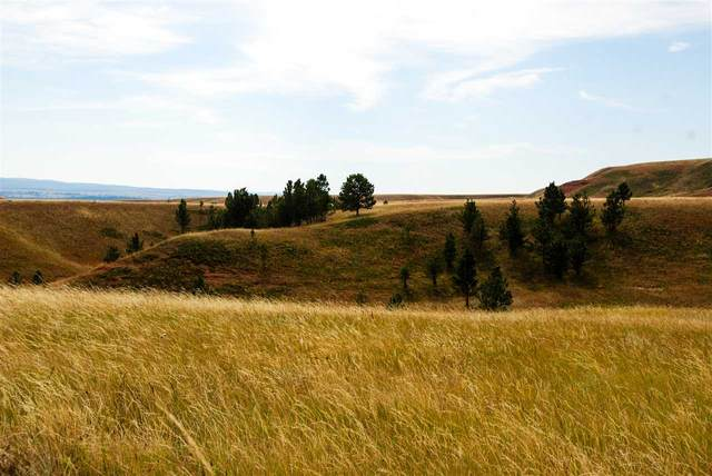 Lot 14 Address Not Published, Sundance, WY 82729 (MLS #67036) :: Christians Team Real Estate, Inc.