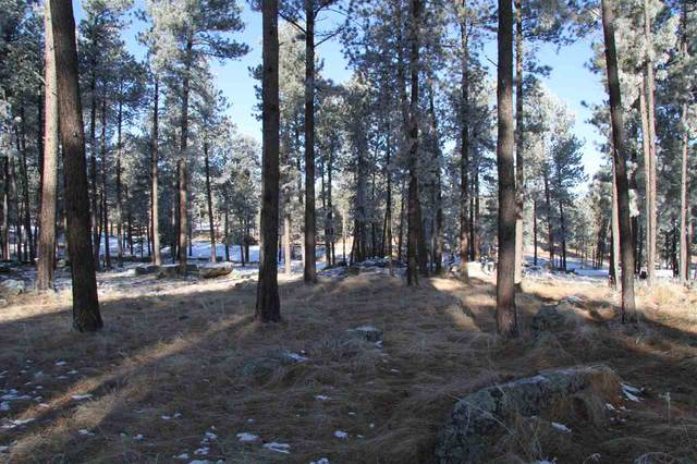 TBD Tin Cup Trail, Custer, SD 57730 (MLS #67052) :: Dupont Real Estate Inc.
