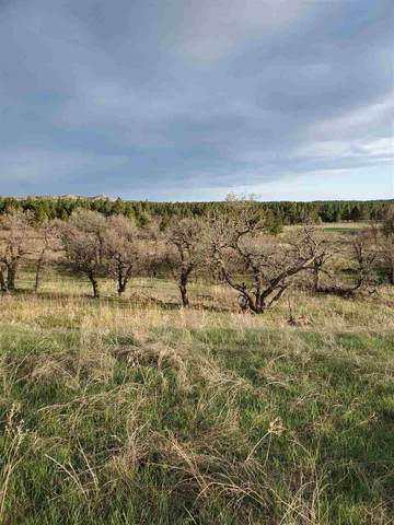TBD 207th Street, Sturgis, SD 57769 (MLS #67060) :: Black Hills SD Realty