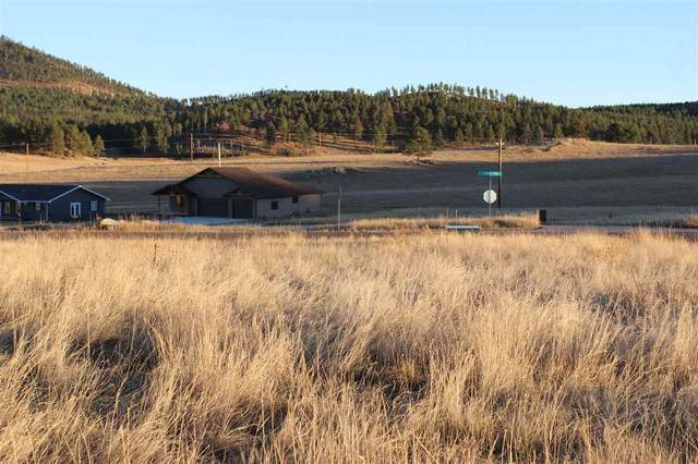 Lot 39 Stone Hill, Custer, SD 57730 (MLS #67064) :: Dupont Real Estate Inc.