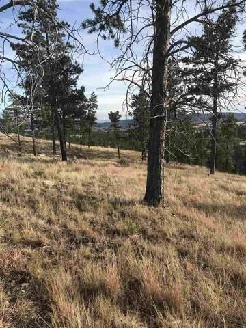Lot 7 Moose Drive, Hot Springs, SD 57747 (MLS #67085) :: Dupont Real Estate Inc.