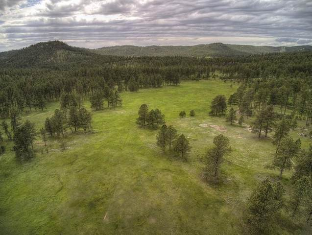 Address Not Published, Custer, SD 57730 (MLS #67097) :: VIP Properties