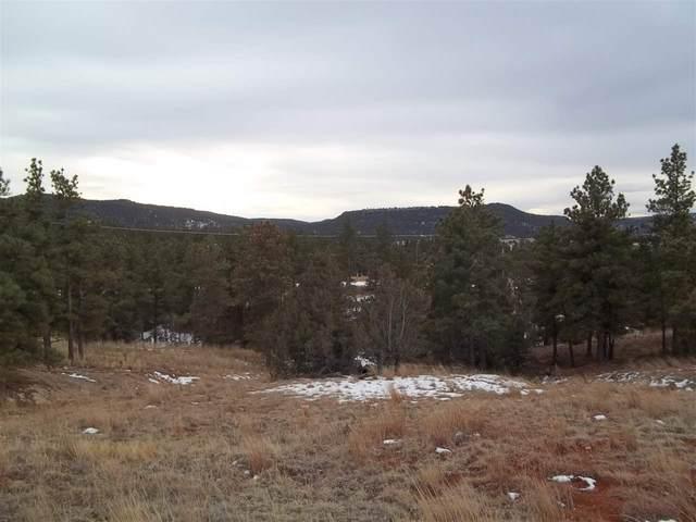 TBD Spirit Canyon Road, Edgemont, SD 57735 (MLS #67109) :: VIP Properties
