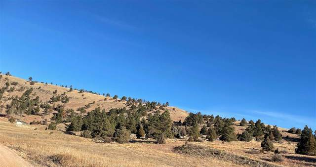 Lot 35 Greg Drive, Hot Springs, SD 57747 (MLS #67130) :: Christians Team Real Estate, Inc.