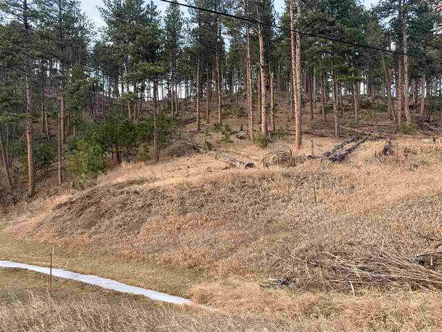 TBD Norris Peak Road, Rapid City, SD 57702 (MLS #67137) :: Black Hills SD Realty