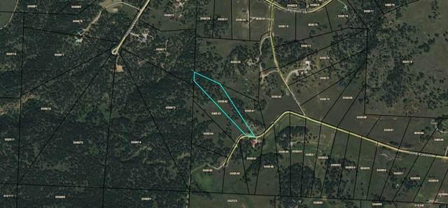 TBD Lone Elk Drive, Hot Springs, SD 57747 (MLS #67144) :: Dupont Real Estate Inc.