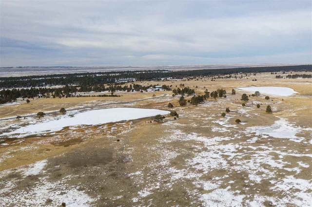 Lot 3 Lupin Road, Upton, WY 82730 (MLS #67158) :: Christians Team Real Estate, Inc.
