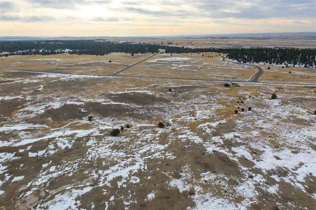 Lot 4 Lupin Road, Upton, WY 82730 (MLS #67159) :: Christians Team Real Estate, Inc.