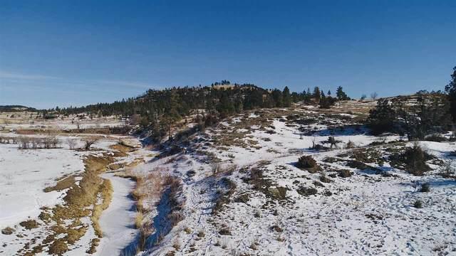 543 Douglas Road, Sundance, WY 82729 (MLS #67206) :: Black Hills SD Realty