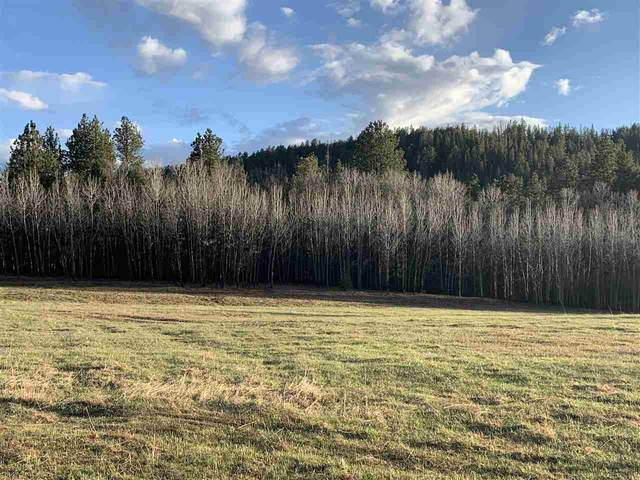 LOT 10 Aspen Lookout Loop, Lead, SD 57754 (MLS #67230) :: Daneen Jacquot Kulmala & Steve Kulmala