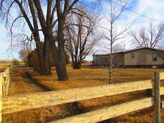 13337 188th Street, Newell, SD 57760 (MLS #67245) :: Black Hills SD Realty