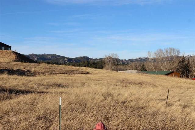 Lot 8 Agate Lane, Custer, SD 57730 (MLS #67265) :: Black Hills SD Realty