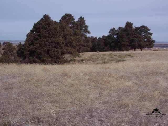 Lot 5A Hat Ranch Drive, Belle Fourche, SD 57717 (MLS #67271) :: Daneen Jacquot Kulmala & Steve Kulmala