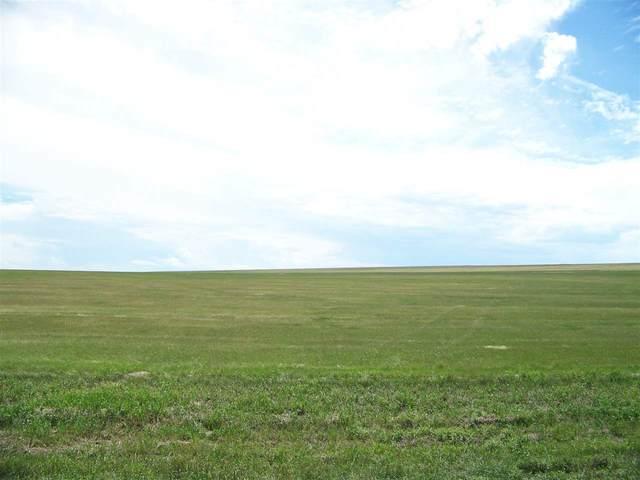14109 Stagecoach, Piedmont, SD 57769 (MLS #67285) :: VIP Properties