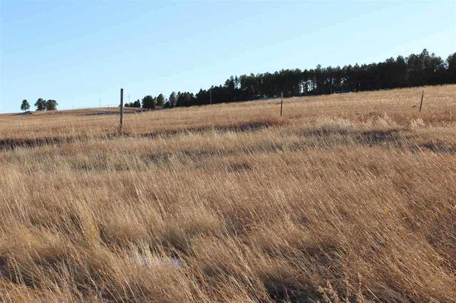 Lot 10 Agate Lane, Custer, SD 57730 (MLS #67332) :: Daneen Jacquot Kulmala & Steve Kulmala
