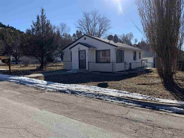 312 Canton Avenue, Hot Springs, SD 57747 (MLS #67396) :: Black Hills SD Realty