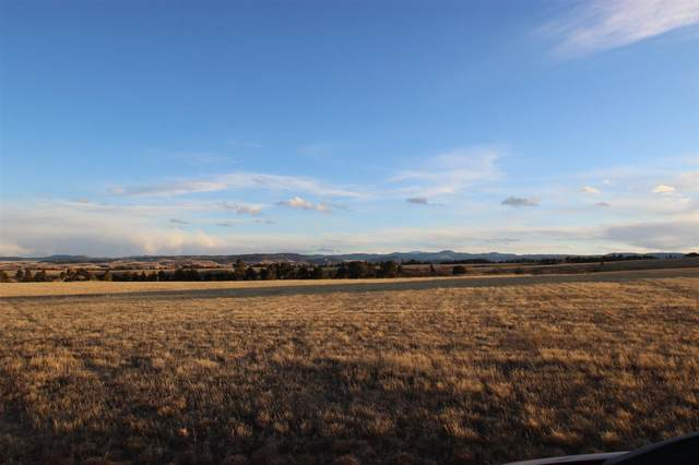 Lot 2 Wagon Box Drive, Belle Fourche, SD 57717 (MLS #67406) :: Black Hills SD Realty