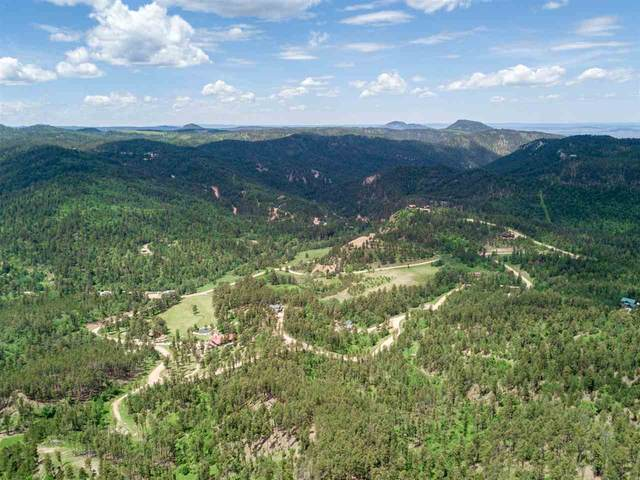 Lot 44 Other, Lead, SD 57754 (MLS #67409) :: Christians Team Real Estate, Inc.