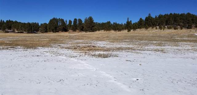 TBD Tract 34 Lone Elk Drive, Custer, SD 57730 (MLS #67410) :: Black Hills SD Realty