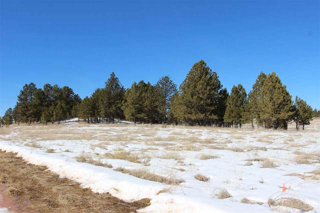 TBD Frontage Rd Address Not Published, Custer, SD 57730 (MLS #67437) :: Daneen Jacquot Kulmala & Steve Kulmala