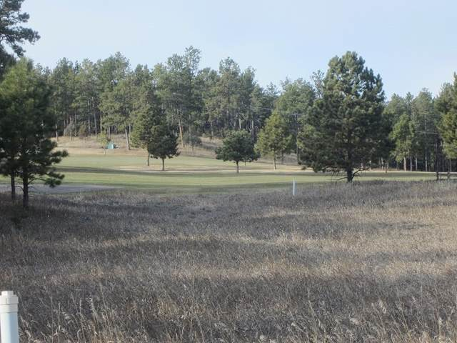 TBD Bald Eagle Road, Hot Springs, SD 57747 (MLS #67455) :: Black Hills SD Realty