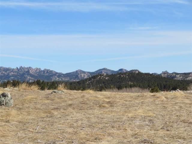 349 Rose Quartz Place, Custer, SD 57730 (MLS #67469) :: Daneen Jacquot Kulmala & Steve Kulmala