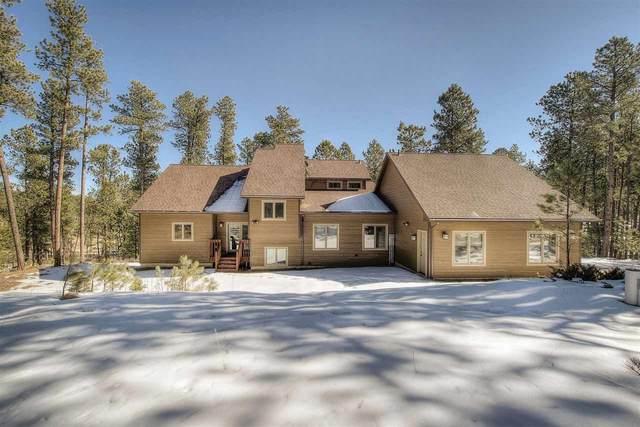 12372 Elk Valley Road, Custer, SD 57730 (MLS #67475) :: Christians Team Real Estate, Inc.