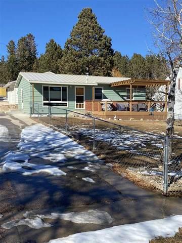 335 Harney Street, Custer, SD 57730 (MLS #67479) :: Daneen Jacquot Kulmala & Steve Kulmala