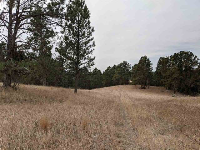 Tract 12 Deer Court, Hot Springs, SD 57747 (MLS #67539) :: Black Hills SD Realty