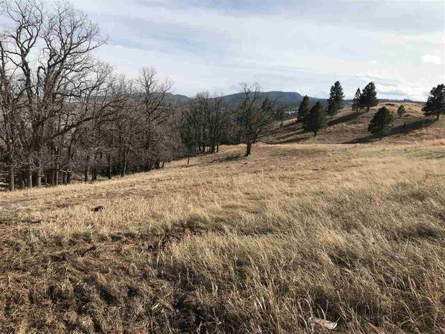 TBD Twisted Oak Road, Sturgis, SD 57785 (MLS #67575) :: Christians Team Real Estate, Inc.
