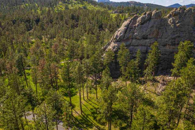 Big Granite Trackers Trail, Keystone, SD 57751 (MLS #67577) :: Daneen Jacquot Kulmala & Steve Kulmala