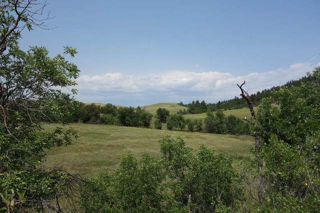 Lh Road, Hermosa, SD 57744 (MLS #67617) :: Black Hills SD Realty
