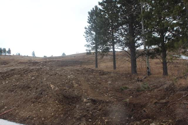 LOT 21 Address Not Published, Sturgis, SD 57785 (MLS #67715) :: Black Hills SD Realty