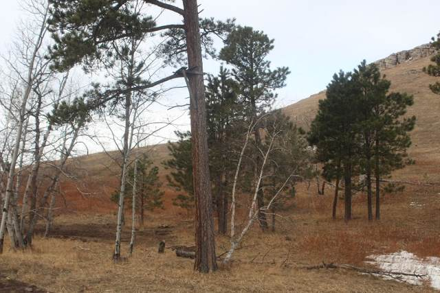 LOT 26 Address Not Published, Sturgis, SD 57785 (MLS #67718) :: Daneen Jacquot Kulmala & Steve Kulmala