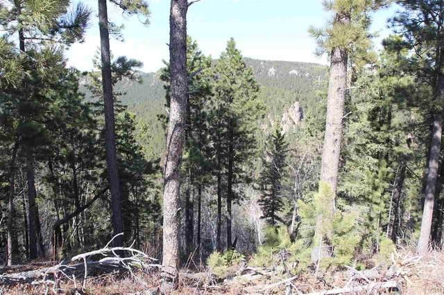 Spokane Lode #1 Ida Grey Road, Lead, SD 57754 (MLS #67722) :: Dupont Real Estate Inc.