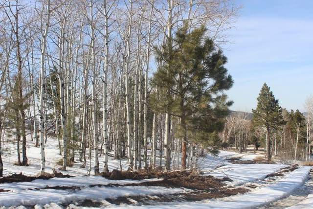 LOT 15 Address Not Published, Sturgis, SD 57785 (MLS #67731) :: Christians Team Real Estate, Inc.