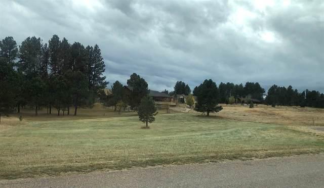 146 Surrey Lane, Custer, SD 57730 (MLS #67740) :: Christians Team Real Estate, Inc.
