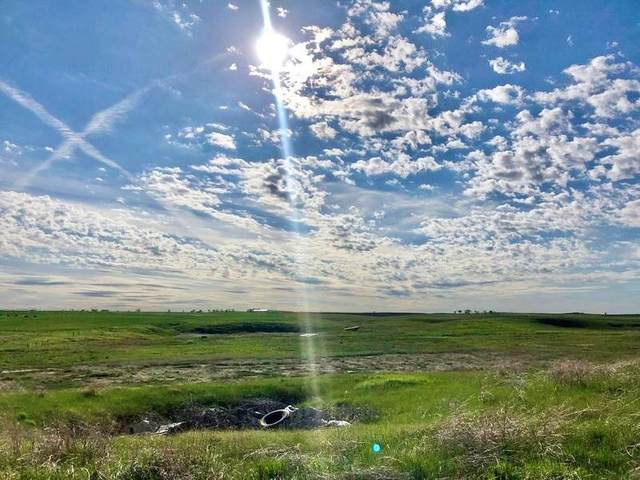18703 Knutson Road, Newell, SD 57760 (MLS #67764) :: Black Hills SD Realty