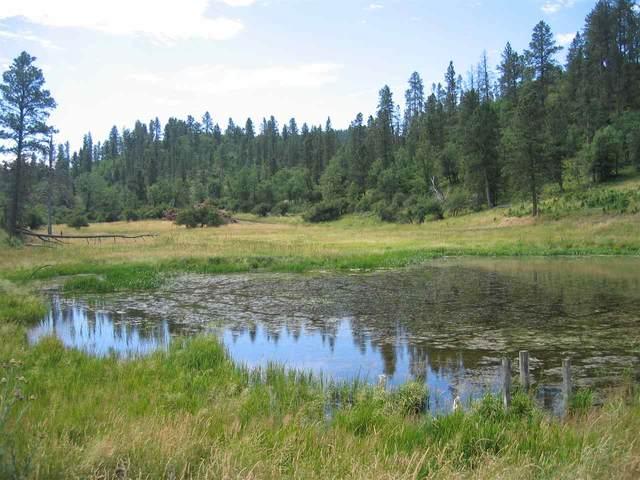 TBD Tutty Trail, Devils Tower, WY 82714 (MLS #67841) :: Black Hills SD Realty