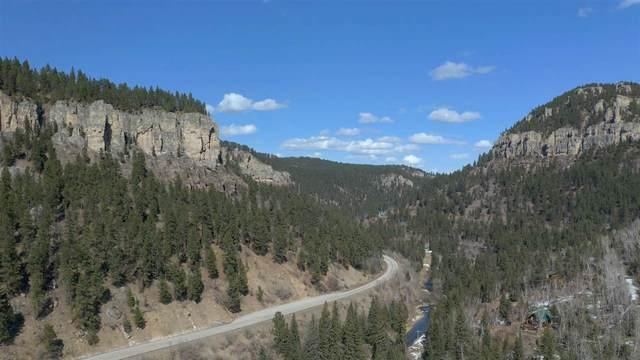 Lot 4 Calamity Gulch Lane, Lead, SD 57754 (MLS #67847) :: Black Hills SD Realty
