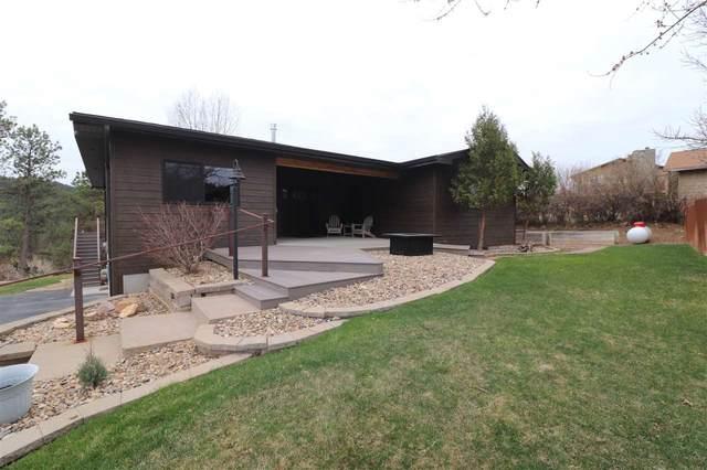 3861 S Loretta Drive, Rapid City, SD 57702 (MLS #67949) :: Black Hills SD Realty